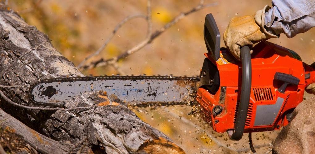 Работа электроинструментом: распил дерева