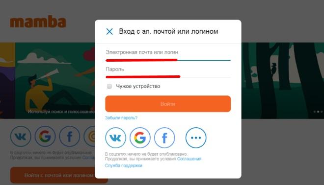 Поля для введення пошти та пароля