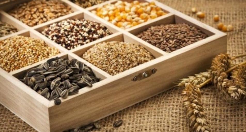 Протравитель семян от вредителей: пшеницы, подсолнуха, кукурузы, гороха